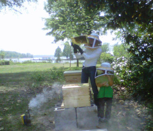 beththorbeekeeping